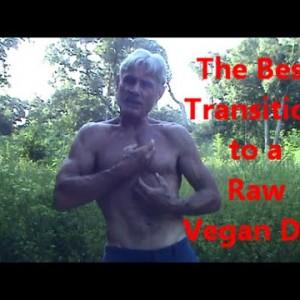 Best Transition to a Raw Vegan Diet